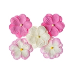 Double-flowers Pink    per set