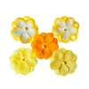 Double-flowers Yellow   per set