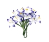 Stemmed Lily White and Blue   per set