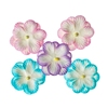 Double-flowers Pastel   per set